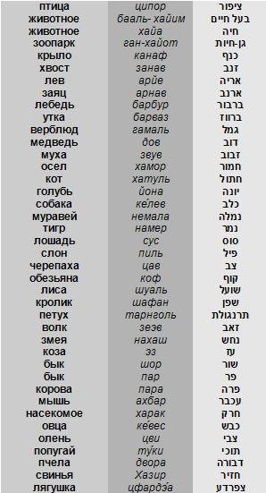 тора на иврите с русской транскрипцией